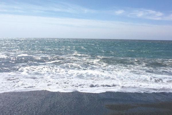 海を守る。くらしを守る。私たちの未来のために